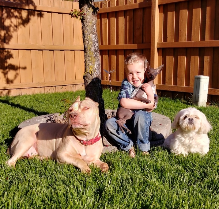 Judith's son with their dogs